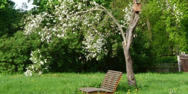 Der Garten des Zinzendorfhauses  lädt ein, die Diskussionen der Akademietagungen  an idyllischem Ort fortzuführen oder nachklingen zu lassen.