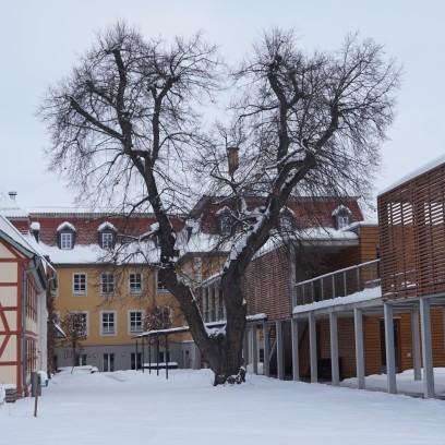 Wintereinbruch im Garten des Zinzendorfhauses, Februar 2021. Foto: © Sabine Zubarik/EAT